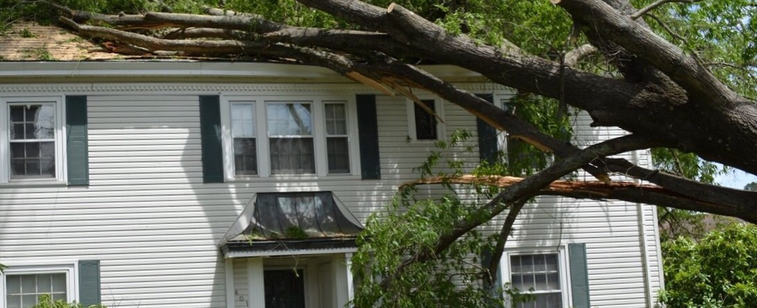 Fact or Fiction?  We had a storm last night and my neighbors tree fell on my house. Their insurance will cover it.